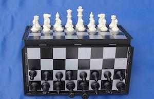 Набор магнитных из двух игр Большой, код 4912В