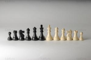 """фигуры """"Staunton №6"""" пластмассовые DGT"""