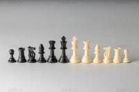 шахматные фигуры пластмассовые без утяжеления король 7,62 см